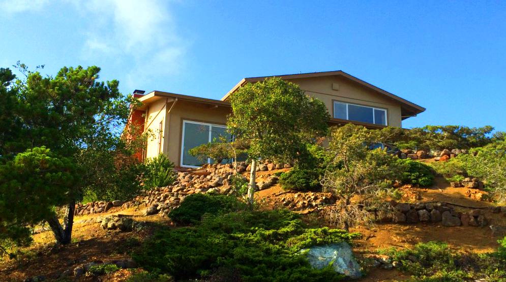 Lone Tree Residential Design, Influences, Viking Leon